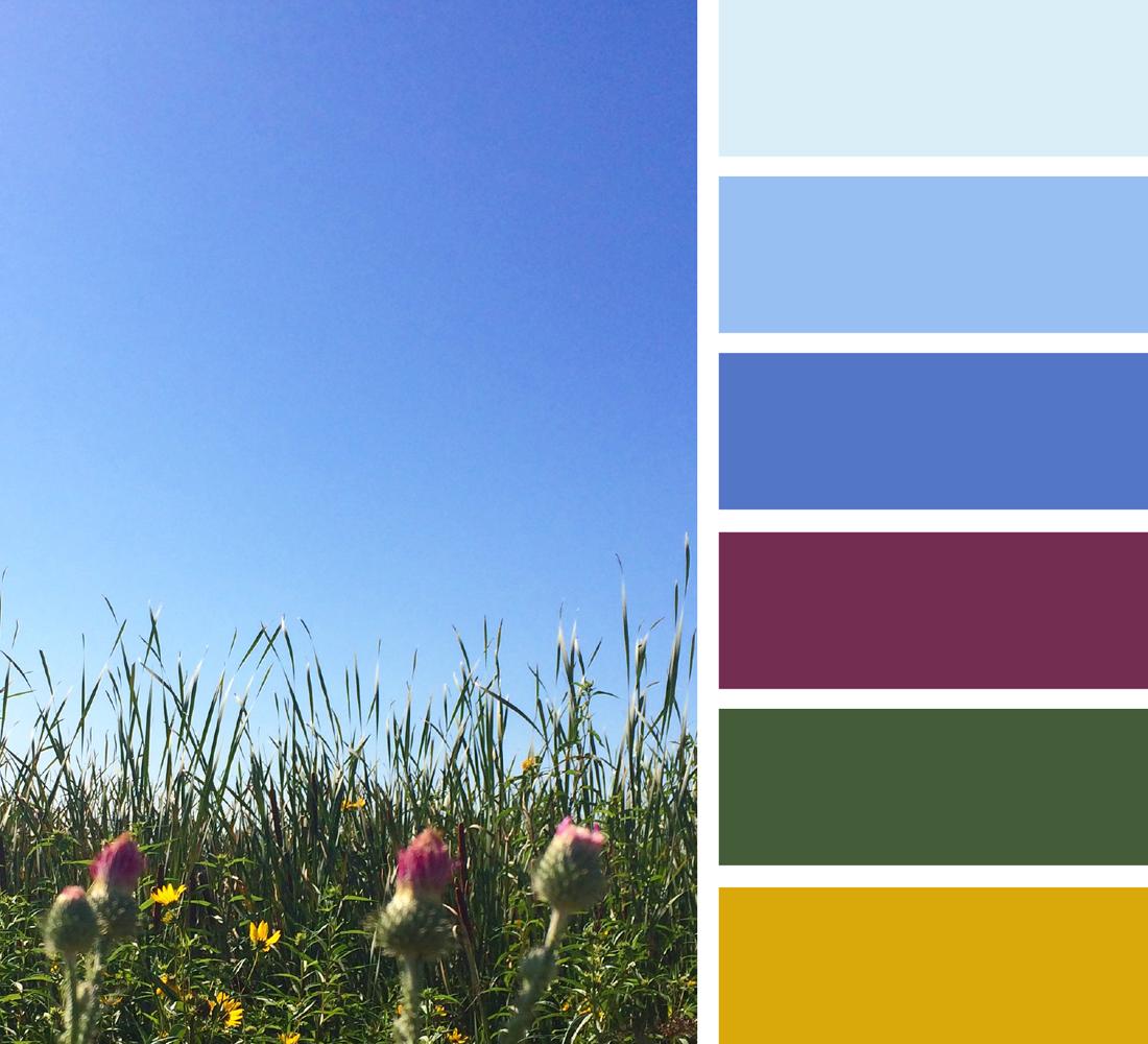 число цветовая гамма картинки с природой найдите карту
